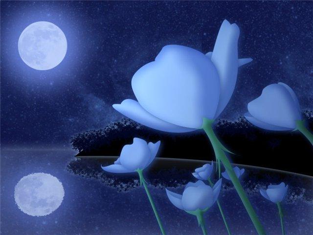 Катха для Луны